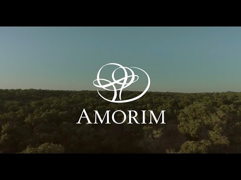António Rios Amorim – CEO, Corticeira Amorim - Listed Family Businesses Stories [Part 2]