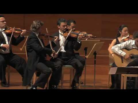 Vivaldi, Concerto in D Major - II mov. largo