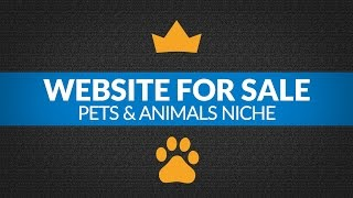 Website For Sale - $4.8K/Month in Pets and Animals Niche, E-Commerce Shopify Viral Product