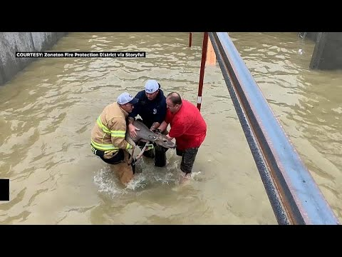 شاهد: رجال إطفاء ينقذون غزالين علقا في مبنى محاصر بالمياه…  - 18:53-2018 / 9 / 24