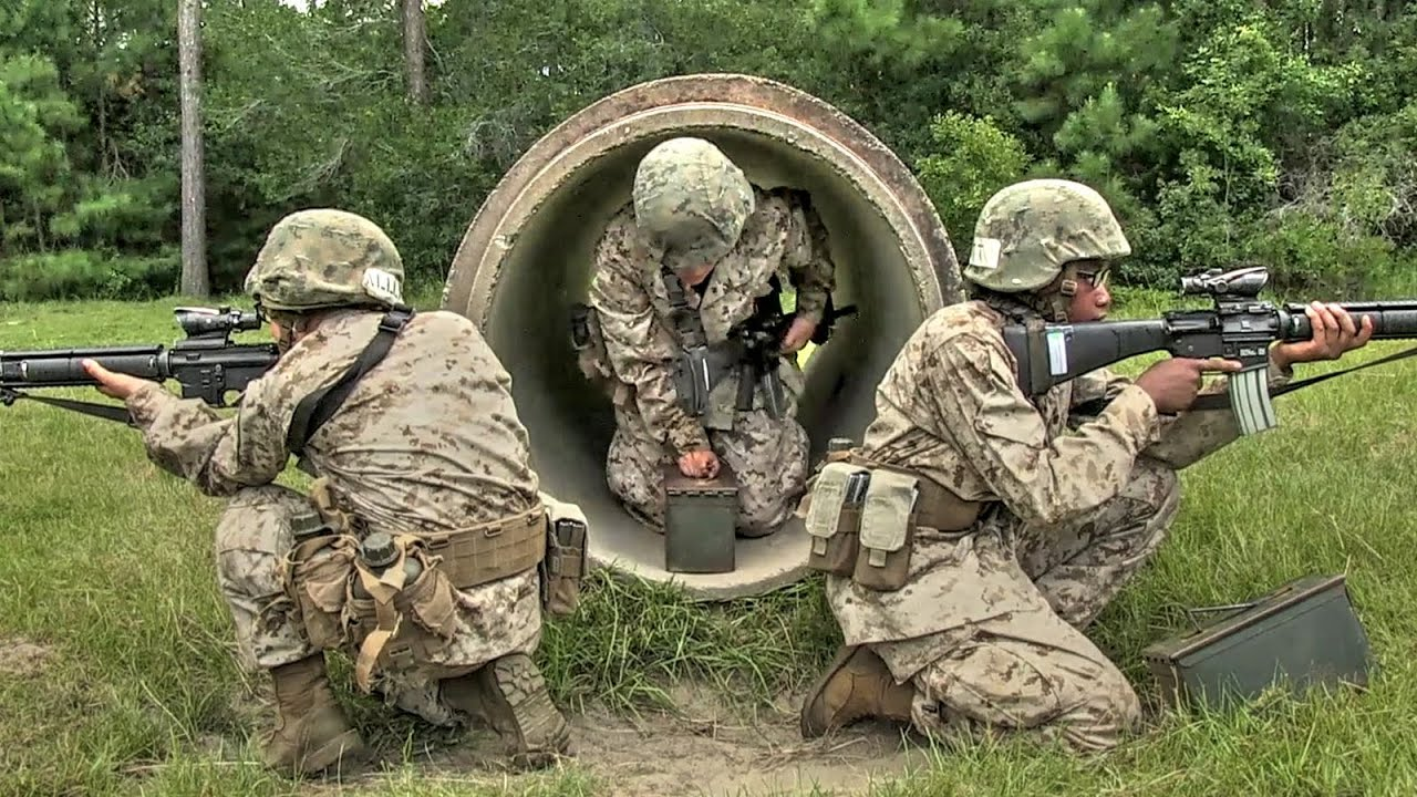 Female Marine Recruits Undergoing The Boot Camp Crucible ...