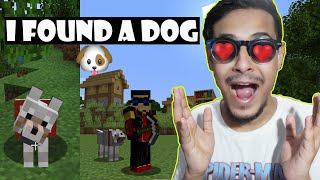 I Found a Dog | Minecraft Bangla Ep03 | The Bong Guy