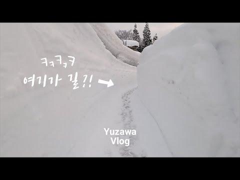 일본 겨울 여행 / 설원 니이가타현, 폭설내린 에치고유자로 눈멍힐링 온천여행 #2