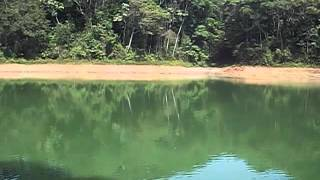 Pescaria na represa billings (tilapia, lambari, cará)