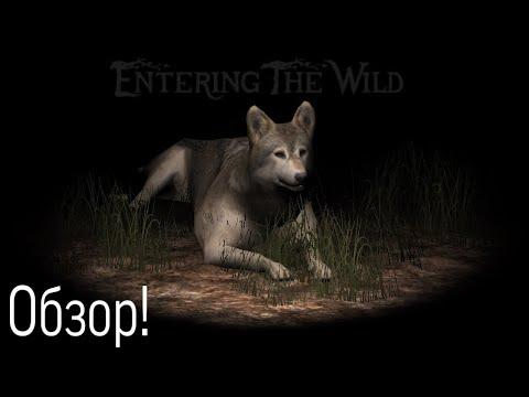 |LEO|Обзор Ultimate Wolf Simulator 2 #1