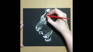 Tiger Scratchboard Drawing Time Lapse Art