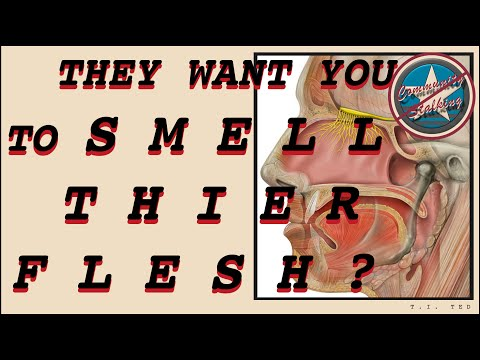 S1:E4  They  Want  You  To  Smell  Their  Flesh