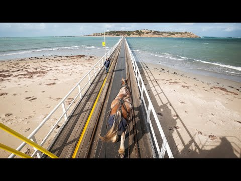 Victor Harbor Horse Tram 11/5/18