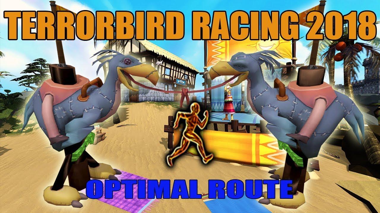 RuneScape 3: Terrorbird Racing Guide 2018