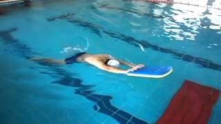 一對一,十堂課游泳教學蛙式  謝育序