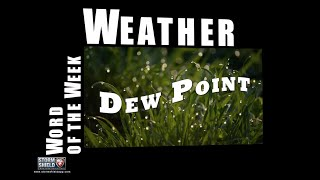 What does the Dew Point mean? | Weather Word of the Week