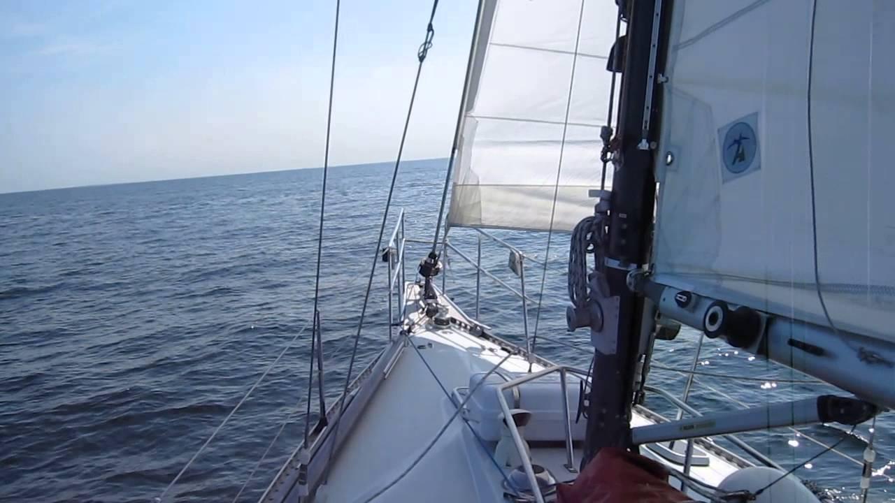 marsvin båd