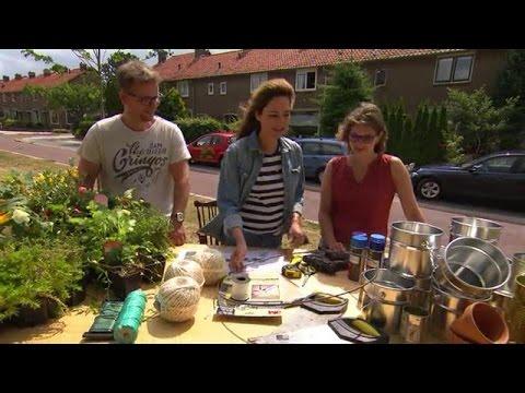 Schommel In Huis : Maak een schommel en een tuinkroonluchter eigen huis tuin