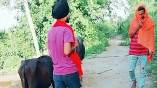 Best tiktok video very funny #sanjubabashivam