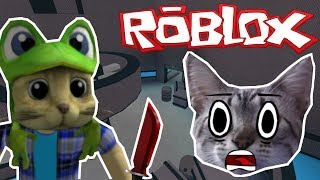 CHESTER THE CAT PLAYING MURDER MYSTERY 2 AT ROBLOX