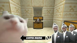 Best of Cat Vibing Coffin Meme - Minecraft