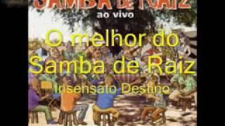 Samba de Raiz - Insensato Destino