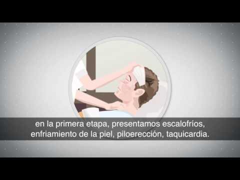 Cuerpo Humano: ¿Qué pasa en nuestro cuerpo cuando se presenta una fiebre?
