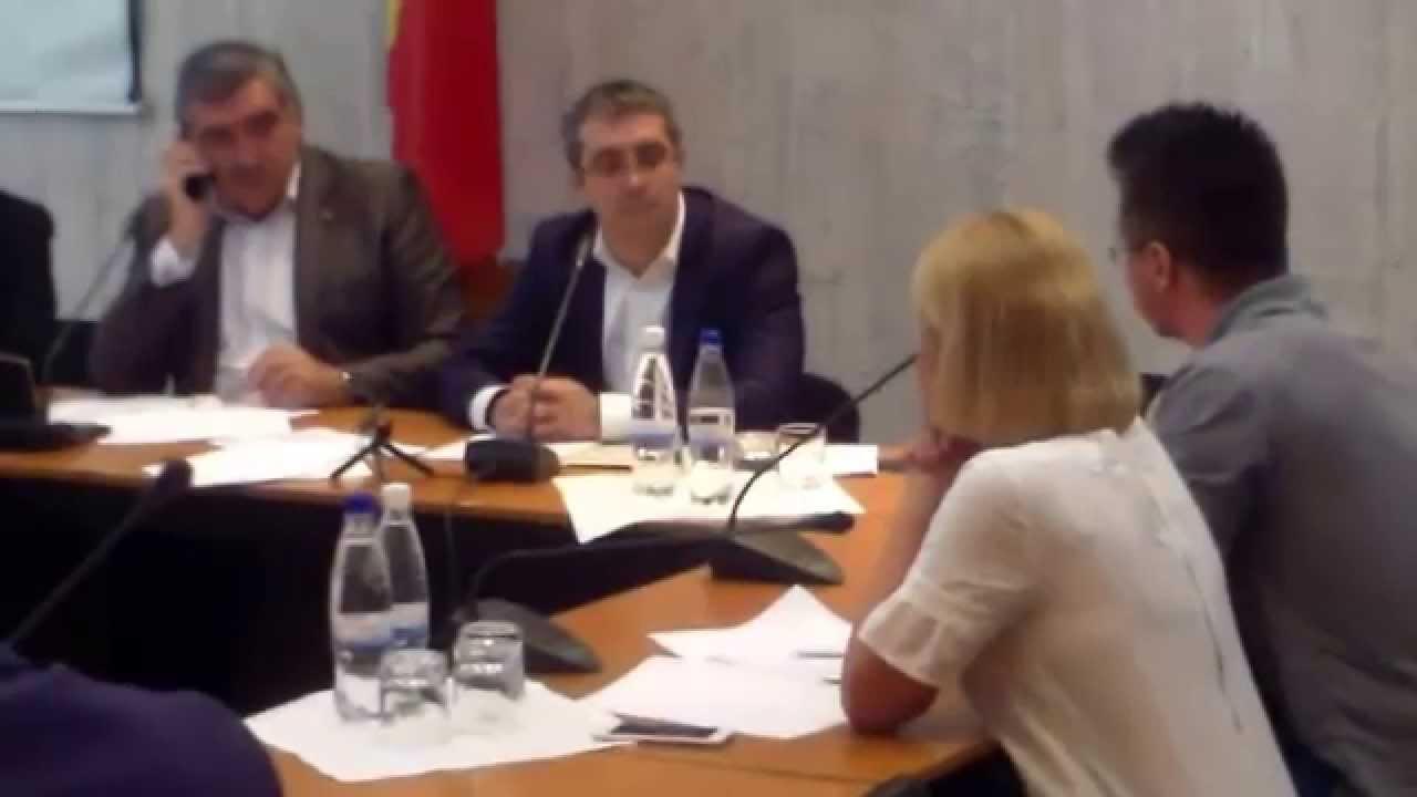 Parlamentul a simulat consultarea societății civile
