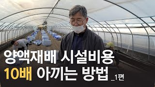 양액재배시설 비용 10배 절감, 토양교체사업  (부여 …