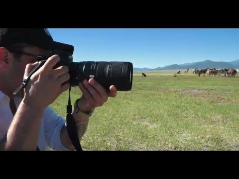 Photographer Shane Russeck uses the SP 70-200mm F/2.8 G2 to capture Wild Horses