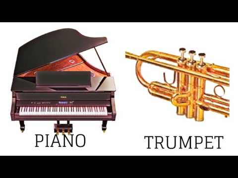 Musical Instrument (Hindi)