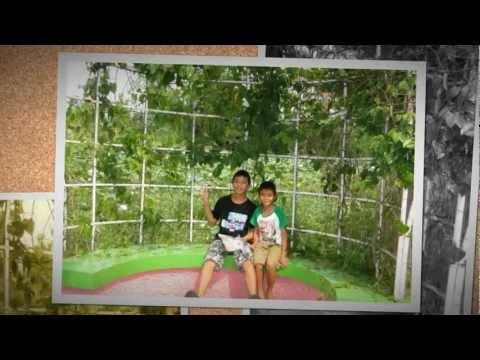 Siampark City สวนสยามทะเลกรุงเทพ