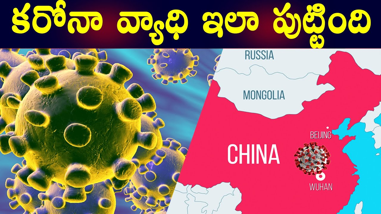CoronaVirus Explained in Telugu by Real Mysteries Prashanth | Corona Virus in India from China
