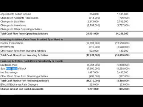 Cash Flow Statement: Analyzing Cash Flow From Financing Activities