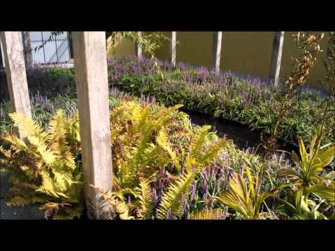 Garten.Design.Blog De Tuinen van Appeltern