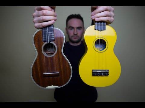 $20 Ukulele vs $1000 Ukulele Comparison