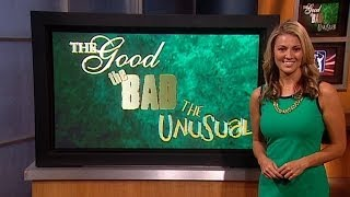 Good, Bad and Unusual | Animals, improbable escapes and more