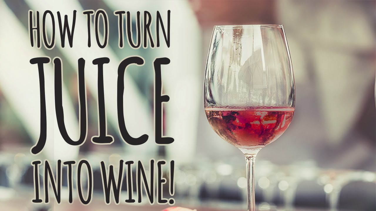 wine making How to make homemade wine if you're a wine lover, you've probably dreamed of making your own wine right at home luckily, with the right tools and ingredients, you can once you get the hang of it, you.