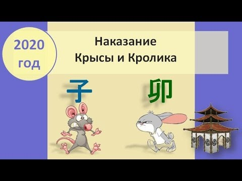Наказание Крыса Кролик в 2020 году