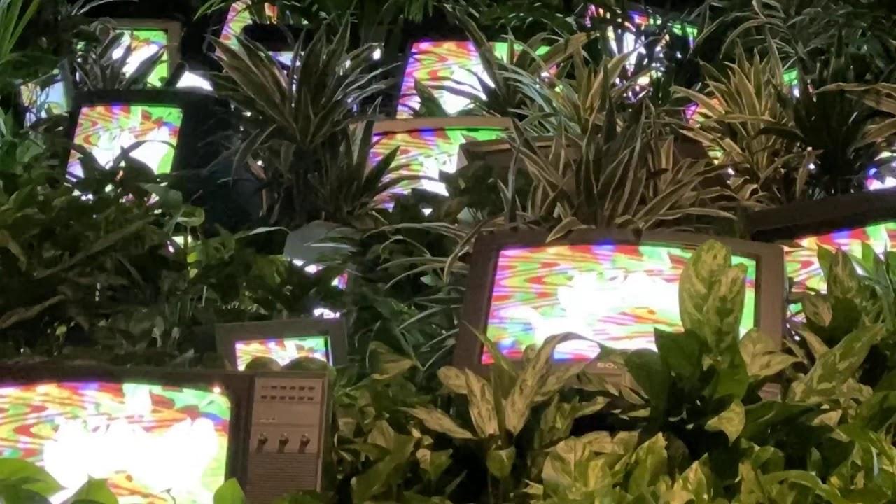 Nam June Paik Tv Garden Youtube