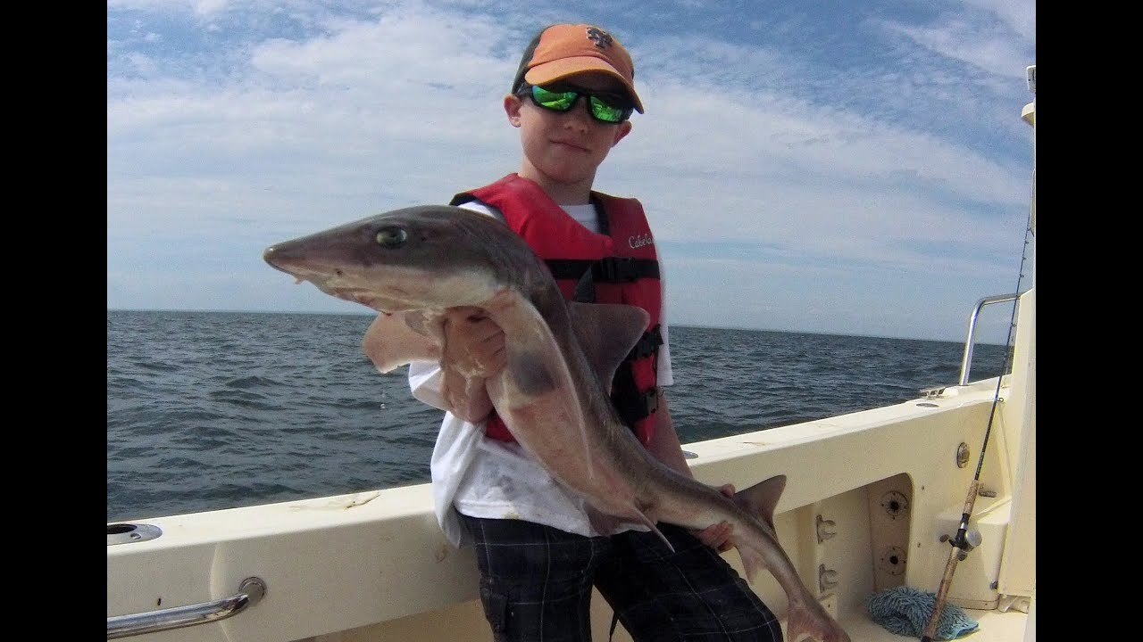 Boy catches shark his size funny reaction youtube for Funny fishing songs