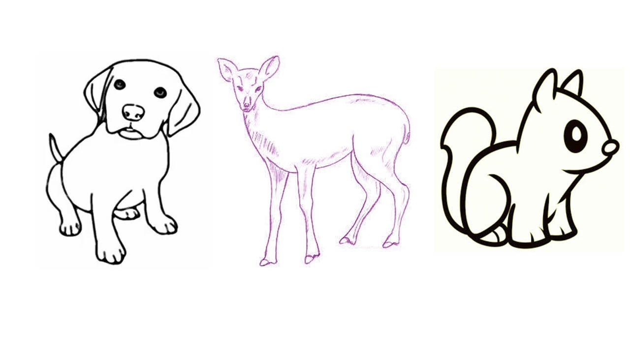 Uncategorized How To Draw Animals For Beginners how to draw animals step by for kids easily beginners