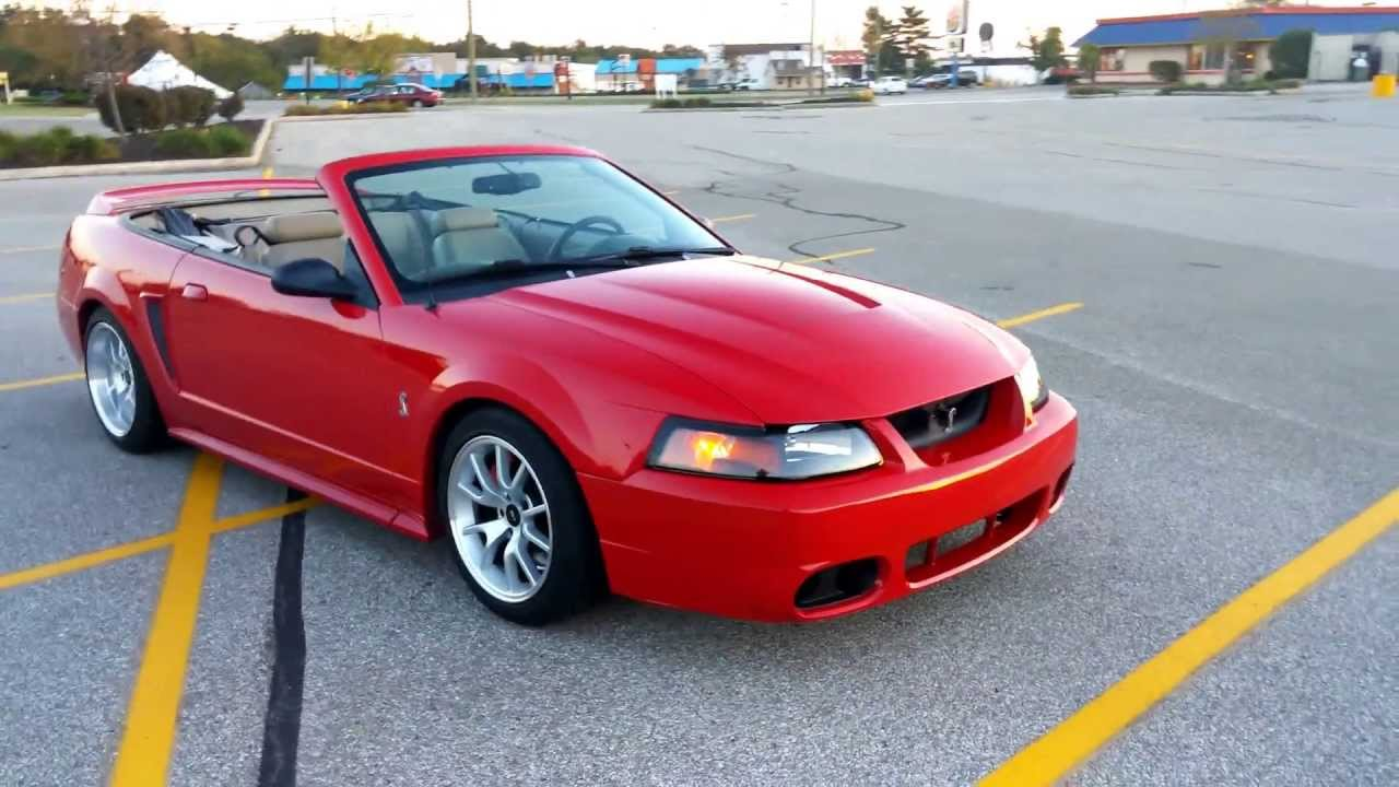 Mustang Terminator Red