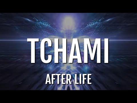 Tchami - After Life (feat. Stacy Barthe) [LYRICS][LETRA]