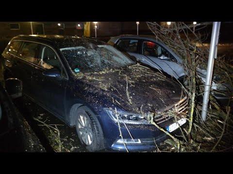 """Orkantief """"Thomas"""" in der Region: Bäume stürzten auf Autos und Straßen"""