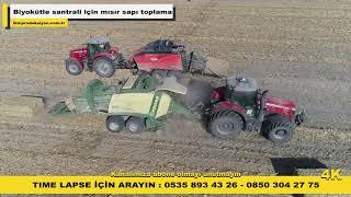 Biyokütle Enerji Santrali için mısır sapı toplama - İKM Prodüksiyon