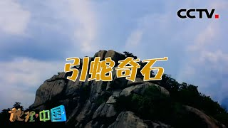 《地理·中国》 20210106 不可思议的石头·引蛇奇石  CCTV科教 - YouTube