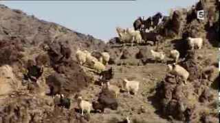 Le désert de Gobi - France 5 thumbnail