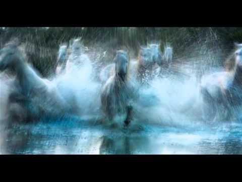 Music video ЮЛИАН - Из разных мы конюшен, господа