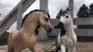 Фото Апрель 2018| Лошади шляйх| Не судите строго