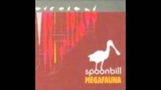 Spoonbill - Festivali