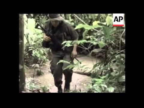 Eradication of coca plantations inside Amazon jungle