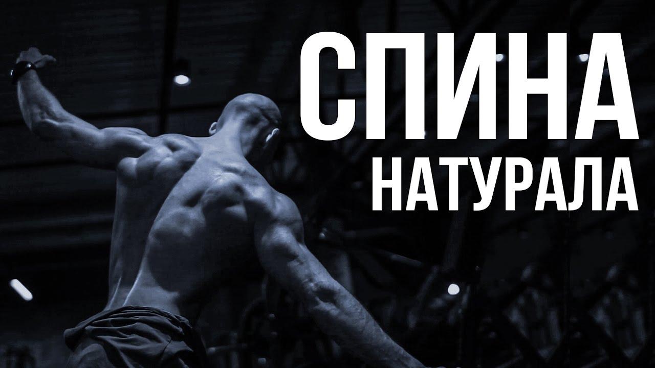 Тренировка натурала - ТРЕНИРОВКА СПИНЫ