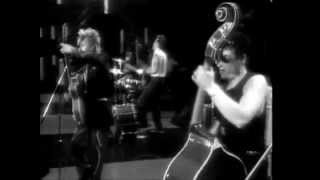 Stray Cats // Nine Lives  (Live This Country's Rockin')