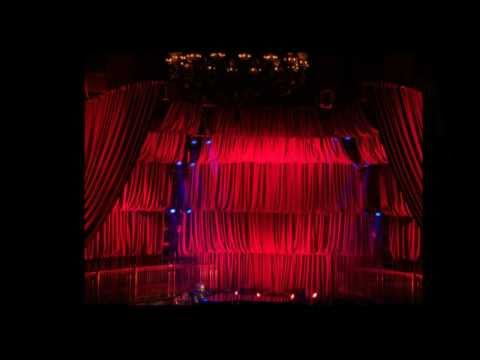 Unique Rose Brand Stage Curtains, Drapery, Backdrops, Star Drops, Printed  NY87
